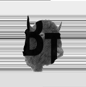 BT_website_4 copie
